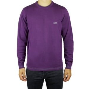 Boss Green Rime_W16 Knitwear in Purple