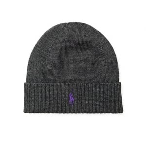 Polo Ralph Lauren Wool Hat in Grey