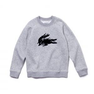 Lacoste Kids 2 Years Sweatshirt in Grey