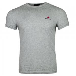 Dsquared2 Small Logo T-Shirt in Grey